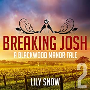 Breaking Josh 2 Audiobook