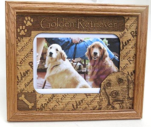 Golden Retriever, Dog Breed , Father