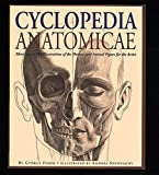img - for Cyclopedia Anatomicae: More Than 1,500 Illustrations of the Human and Animal Figure for the Artist book / textbook / text book