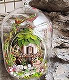 森の小屋 DIY 組み立て式 球体ガラス ミニチュアドール ハウス 音感センサーライト搭載 (精霊の小屋)