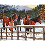 CaptainCrafts New DIY Oil Painting Paint by Numbers Kit 16x20  for Adult Beginner Kids, Linen Canvas - Group Horse (with Frame) (Color: With Frame)