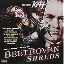 Beethoven Shreds