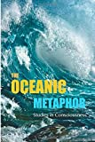 The Oceanic Metaphor: Meaning Equivalence (M.E.), Probability Theory, and the Virtual Simulation Hypothesis of Consciousness