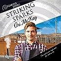 Striking Sparks: Dreamspun Desires, Book 24 Hörbuch von Ari McKay Gesprochen von: Rusty Topsfield