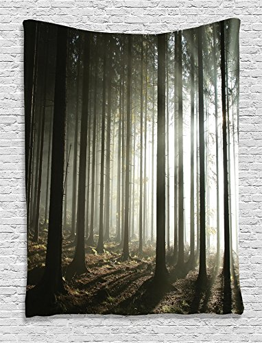 Ambesonne Farm House Decor Collection, Light Entering Coniferous Forest with Leafless Branches on a Misty Autumn Morning Picture, Bedroom Living Room Dorm Wall Hanging Tapestry, Dark (Themed College Parties)