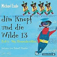 Jim Knopf und die Wilde 13 Hörbuch von Michael Ende Gesprochen von: Robert Missler