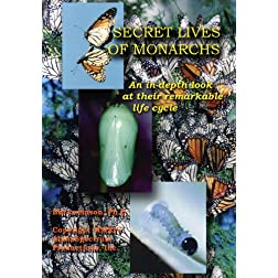 Secret Lives of Monarchs