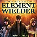 Element Wielder: Void Wielder Trilogy, Volume 1 Audiobook by Cesar Gonzalez Narrated by David A. Conatser