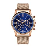 Womens Luxury Wristwatch, Mitiy Roman Numerals Stainless Steel Mesh Band Analog Quartz Watch- Gift for Women (Color: Blue)