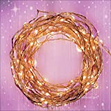 Fairy Star Lights™ Extra Long 39 ft Warm White LED Copper String Lights - Indoor Outdoor All Weather - FREE Battery Power Adapter Included with DC 6V Wall Adapter!