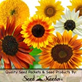 "100 Seeds, Sunflower ""Crazy Mix"" (10+ Varieties) Seeds by Seed Needs"
