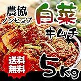 韓国農協 ノンヒョプ 白菜のキムチ5Kg