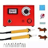 Wood Burning Tool, 50W Woodburner Kit, Pyrography Set 20Pcs Pyrography Nib Portable Pyrography Machine Dual Pen Wood Pyrography Crafts Kit (Pointer Display) (Tamaño: Pointer display)