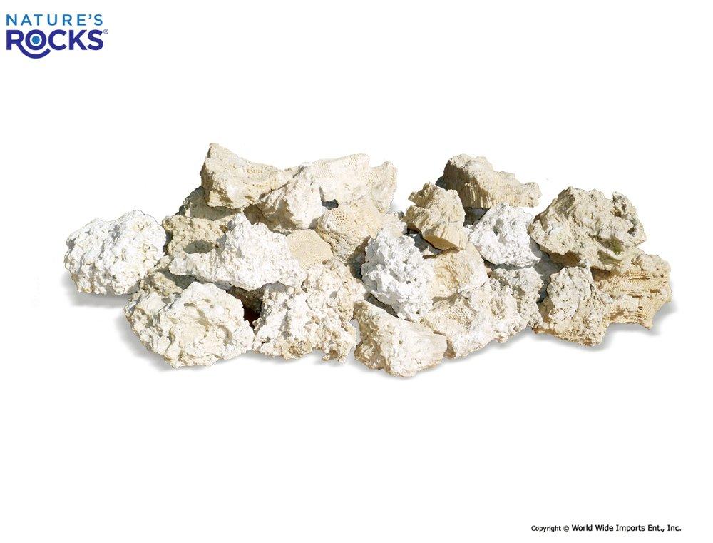Worldwide Imports AWW0855 Atlantic Coral Rock