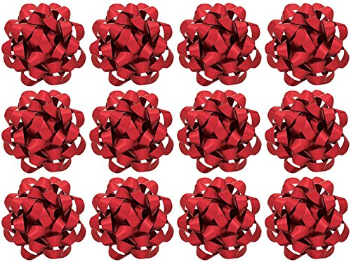 The Gift Wrap Company 12 Count Decorative Matte