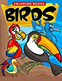 Birds Coloring Book (Jumbo Coloring Book) (Coloring Book For Kids) (Volume 6)