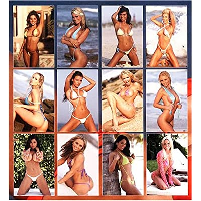 Sexy American Model Swimsuit 2008 Wall Calendar