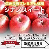 【信州長野県産 プレミアム りんご】 シナノスイート 訳あり 14~16玉 5kg箱
