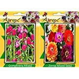 Airex Gomphrena Mixed & Zinnia Mixed Flower Seeds ( Pack Of 25 Seeds Per Packet)
