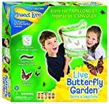 Insect Lore Butterfly Garden by Insect Lore