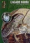 L'Agame Barbu: Pogona Vitticeps