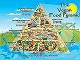 Vinteja charts of - Vegan Food Pyramid - A3 Poster Print