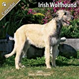 AVONSIDE PUBLISHING Irish Wolfhound
