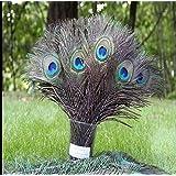 Sopeace Real Natural Peacock Feathers, 100 Pack (Tamaño: 12 Pcs)