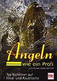 Angeln wie ein Profi: Top-Techniken auf Fried- und Raubfische