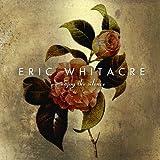 ENJOY THE SILENCE (Vinyl)