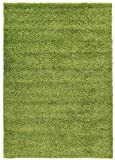 Shaggy Collection Solid Color Shag Area Rugs (Green, 5'x7') (4135)