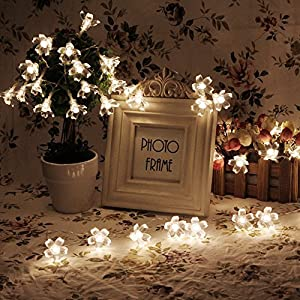 Amazon.com - Battery Operated String Lights LED Sakura Fairy Light Flower for Bedroom and Indoor ...