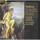 Beethoven: Die Gesch�pfe des Prometheus Op.43