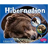 Hibernation (Patterns in Nature)
