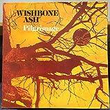 WISHBONE ASH pilgrimage LP Mint- MCA-36 USA MCA Stereo 1973 Record
