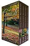 Amish Seasons of Love BOXED SET Books...
