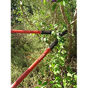Tabor Tools GL16 Bypass Lopper, Makes Clean Professional Cuts, 1.25-Inch Cutting Capacity, 28-Inch Tree Trimmer and Branch Cutter Featuring Sturdy Extra Leverage 22-Inch Handles.