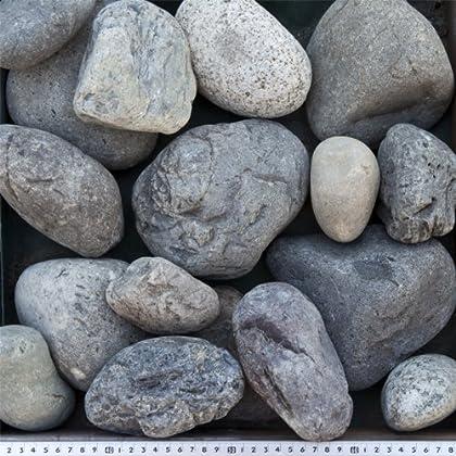 天竜川流域産 栗石100-150mm 10kg(6L) 【和風のロックガーデンに最適です!!】