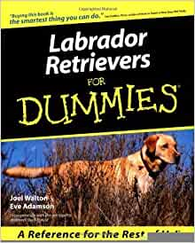 Labrador Retrievers For Dummies [Paperback] [2000] (Author) Walton