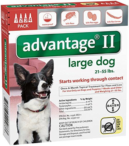 Advantage II Large Dog 4-Pack (Dog Advantage Flea compare prices)