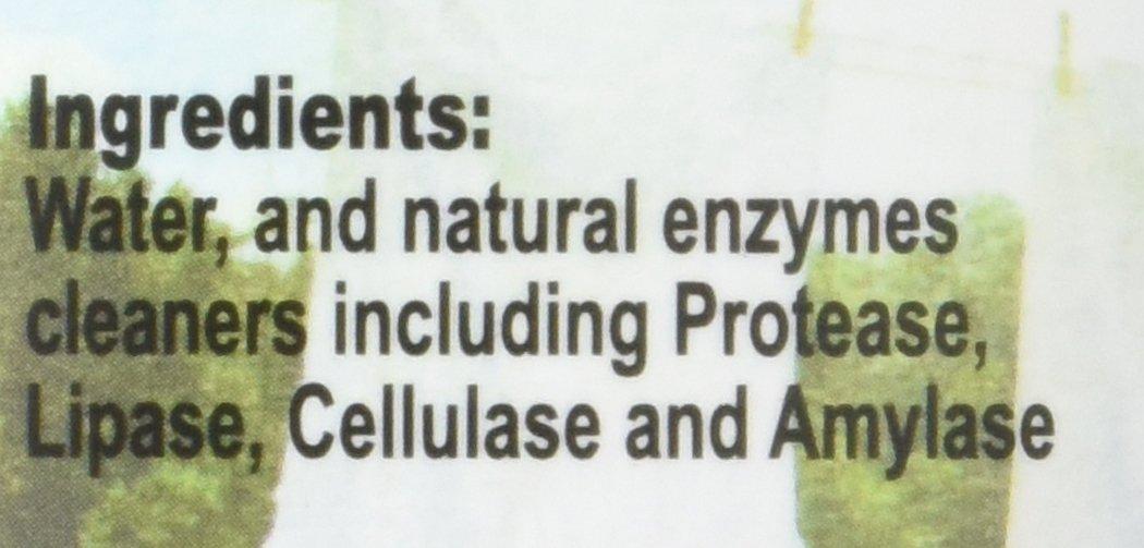 Amazon.com: 16oz Concentrate- Kleen Free Naturally, Natural, Non ...