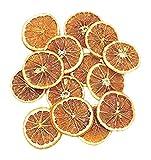大地農園 天然素材 オレンジ(45g入り) N DO20010-000