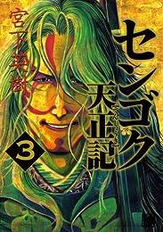 センゴク天正記 3 (3) (ヤングマガジンコミックス)