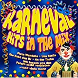 "Karneval Hits in the Mixvon ""Various"""