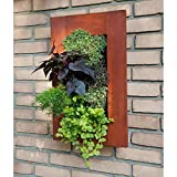 BrightGreen Wall Mounted Living Wall Frame, Brown, Wood