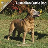 AVONSIDE PUBLISHING Australian Cattle Dog [Year- 2011]