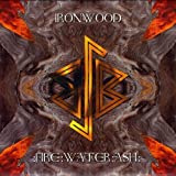 Fire: Water: Ash by Ironwood (2009-03-10)