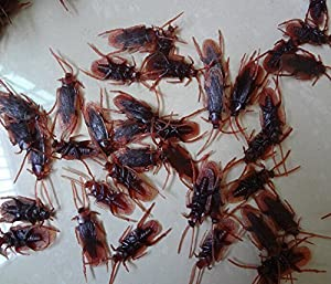 12- Fake Roaches Prank Novelty Cockroach Bugs Look Real