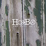 100 Feet Tall by Hobo (2013-07-23?