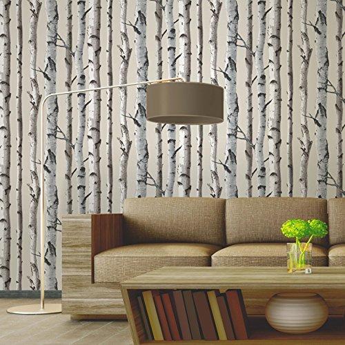 tapete-natur-beige-creme-fd31051-birke-wald-holz-fine-decor